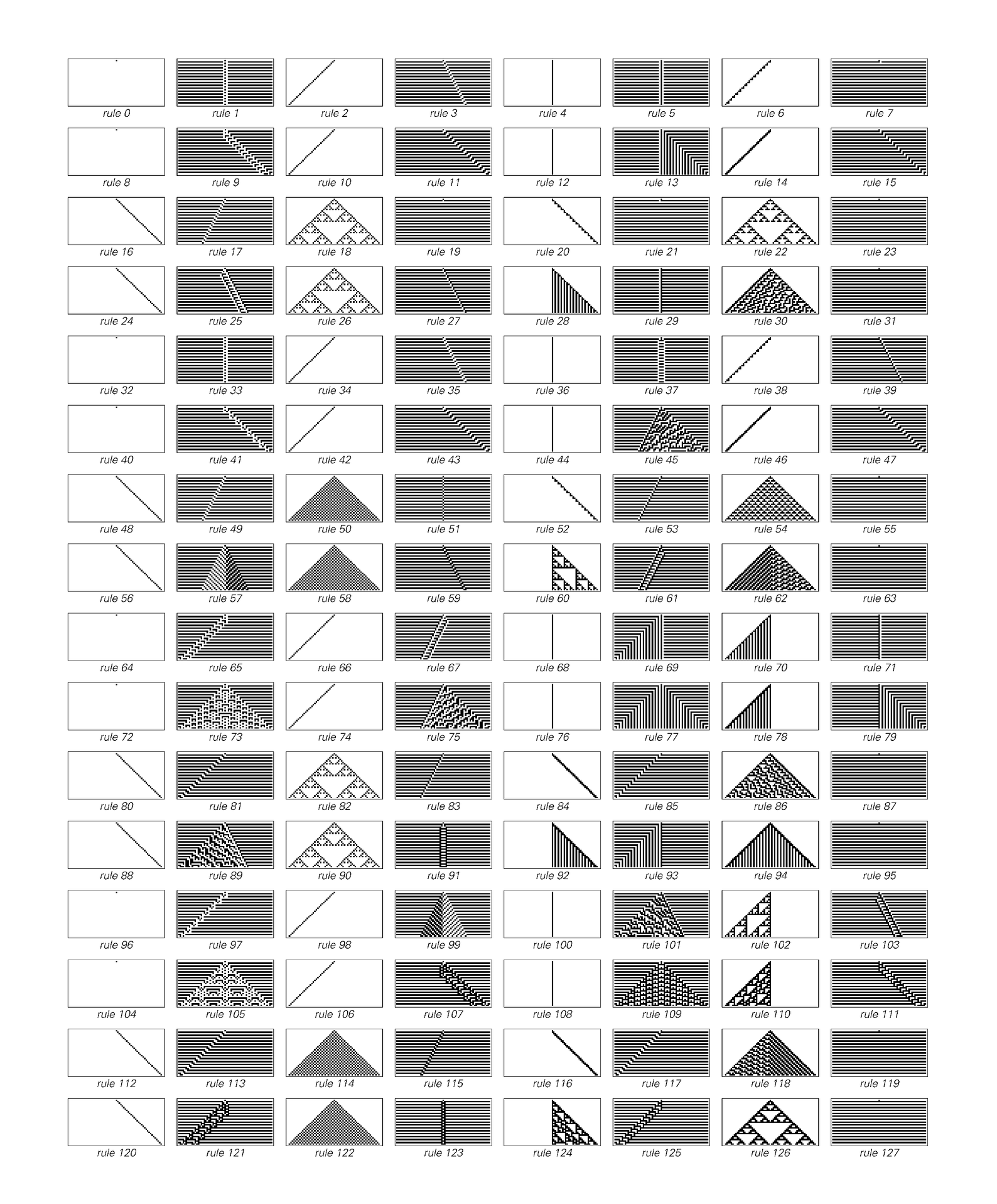 Evolution of cellular automata, continued