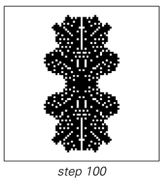 Stages of cellular automaton evolution