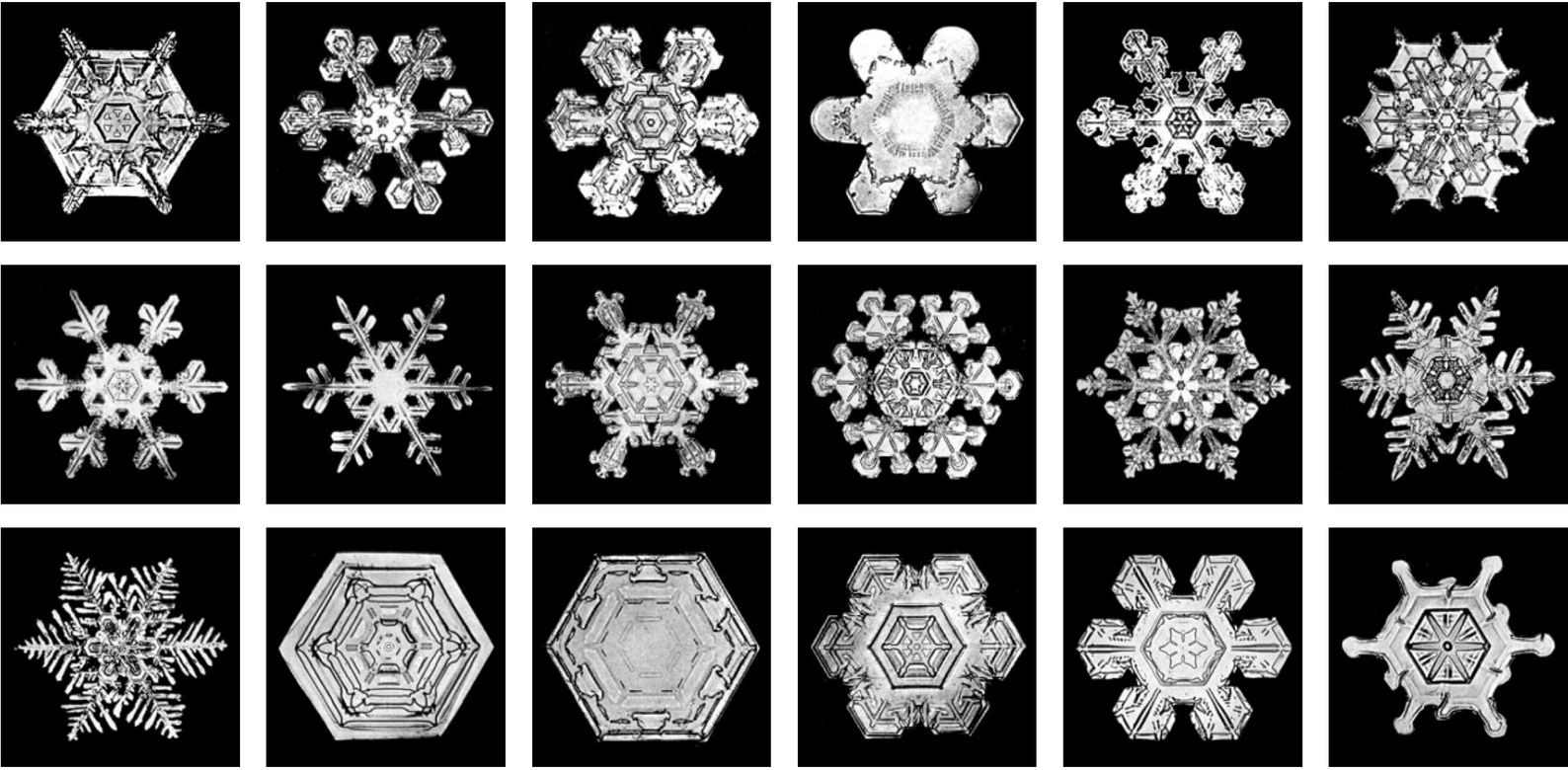 Examples of typical forms of snowflakes