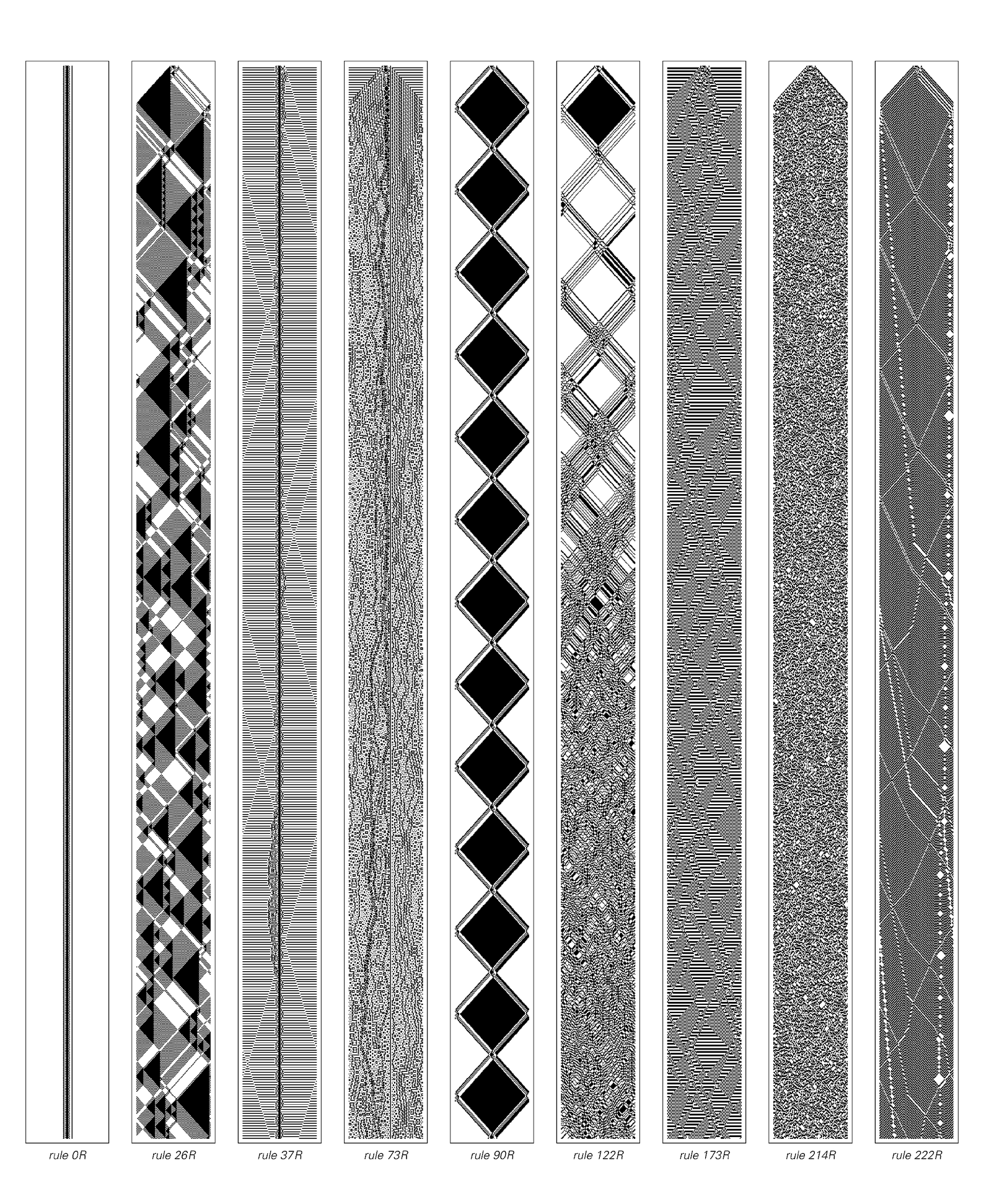 Reversible cellular automata with various rules