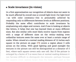 Scale invariance [in vision]
