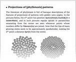 Projections of [phyllotaxis] patterns