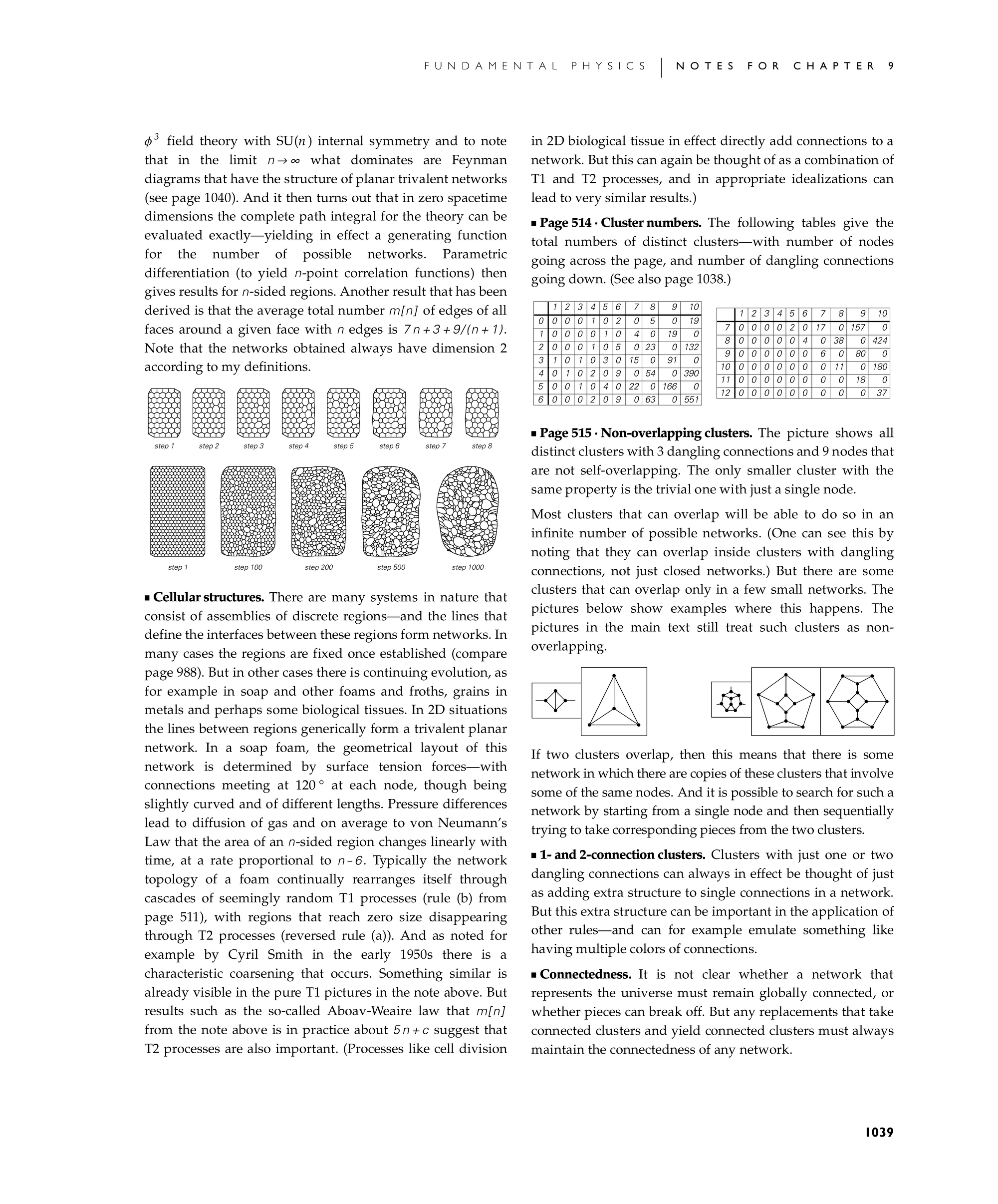 Notes for Evolution of Networks: A New Kind of Science